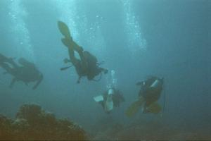 19447_divers at Poipu
